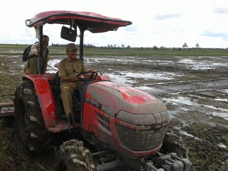 Pengolahan Lahan Program UPSUS Desa Mukti Jaya oleh Bapak Camat Kecamatan Muara Telang